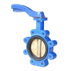 butterfly valve end connection lug types